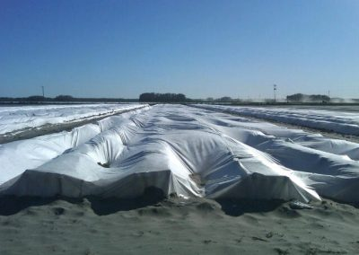 Nonwoven converters, Sonic lamination, Ultrasonic lamination, Sonic bonding, Rewinding and slitting, Gro-Guard, Row Covers, Floating row covers, Crop Covers, Agricultural Covers, Agricultural tarps, Frost protection covers, Insect protection covers